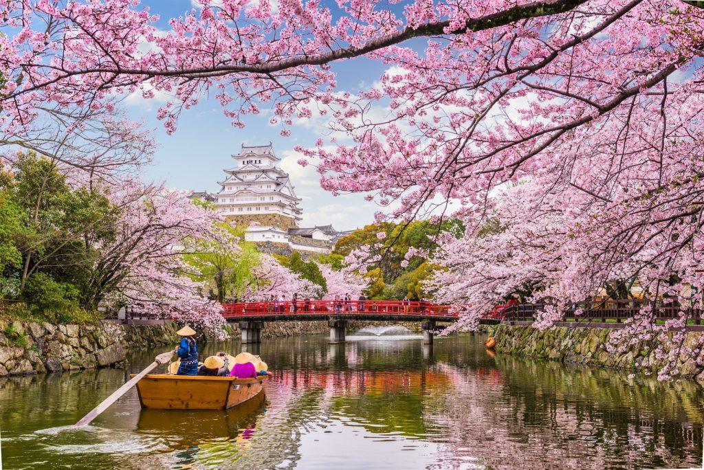Heavenly Beautiful Japan
